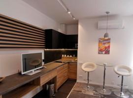 Luxury Apartment B304